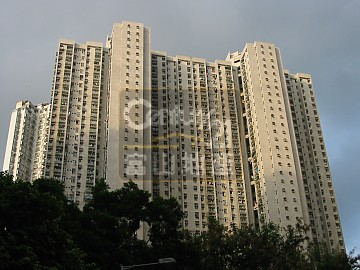 Apartment / Flat / Unit | FUNG SHING ST 38, KING LAI COURT BLK A KING CHEONG HSE (HO, Hong Kong 1