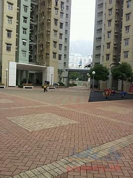 Apartment / Flat / Unit | CHOI HUNG RD 242, RHYTHM GDN BLK 01 (PSPS), Hong Kong 2