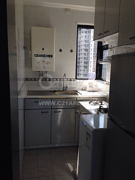 Apartment / Flat / Unit | ARBUTHNOT RD 15-17, BEL MOUNT GDN, Hong Kong 8