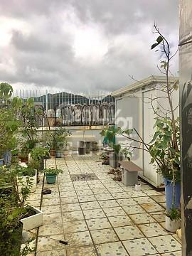 威豪花園 連天台