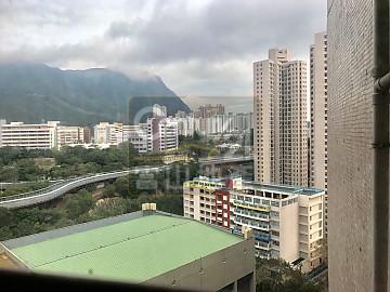 鳳德村 靚景東南綠表