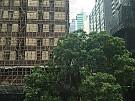 骆克道88号, 香港写字楼