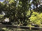 毕架山花园 (覆式)