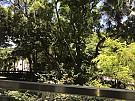 毕架山花园